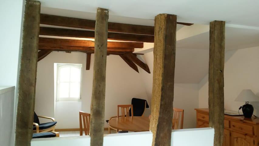 appartement du vieux collège - Château-Gontier - Apartamento