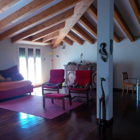 Cozy Private Room in Bocconi area, WiFi, relax! - Milano - Ev
