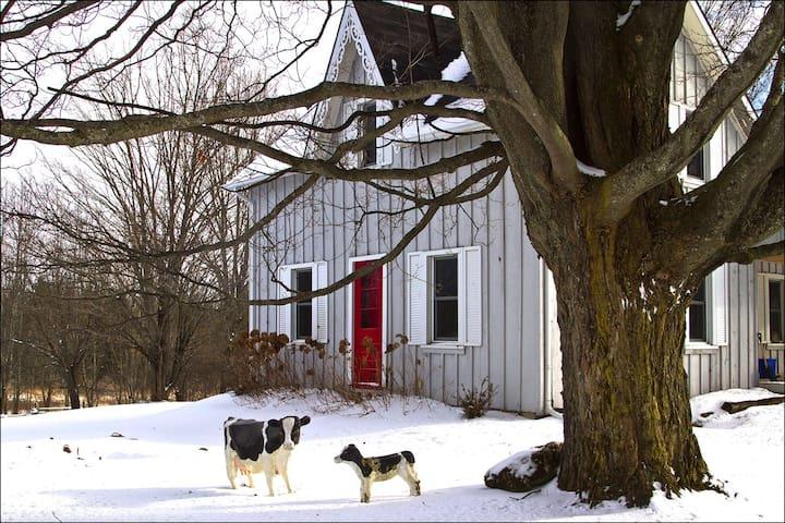 Charming Beaver Valley Farmhouse - Flesherton