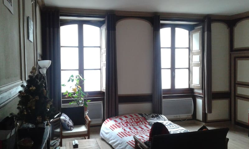 Grand salon dans appartement en hypercentre - Rennes - Appartement