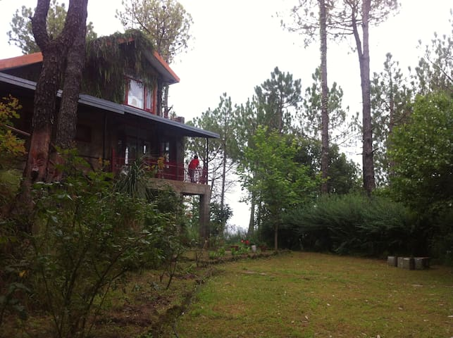 Rambling Rose - Entire Cottage, Himachal Pradesh - Solan