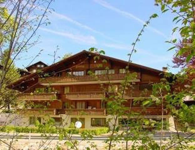 Cozy apartment with parking in Gstaad - 薩嫩(Saanen)