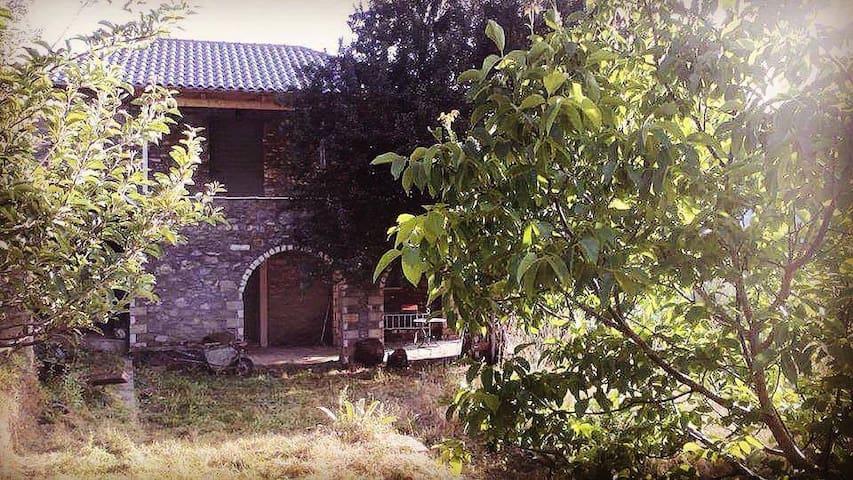 Alagonia Taygetos View - Alagonia - Maison