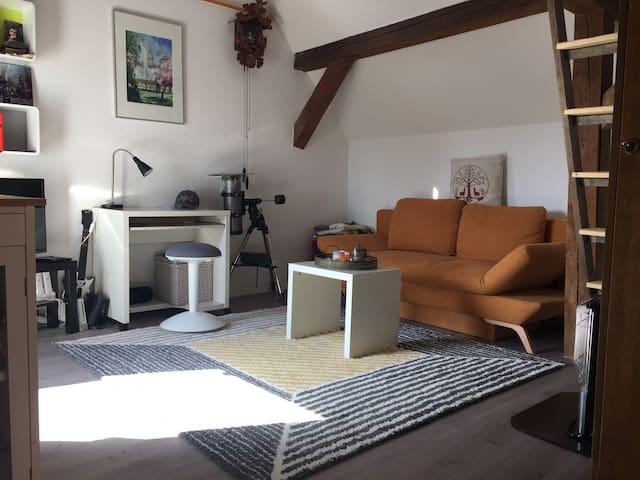 Urige Scheune auf dem Land mit Hornisgrindeblick - Achern - 아파트