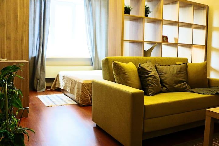 Ligth Private 1BR Apartment - Gelendzhik - Lägenhet