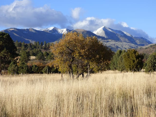 Spend a night on our private ranch in Durango - Hesperus - Hus