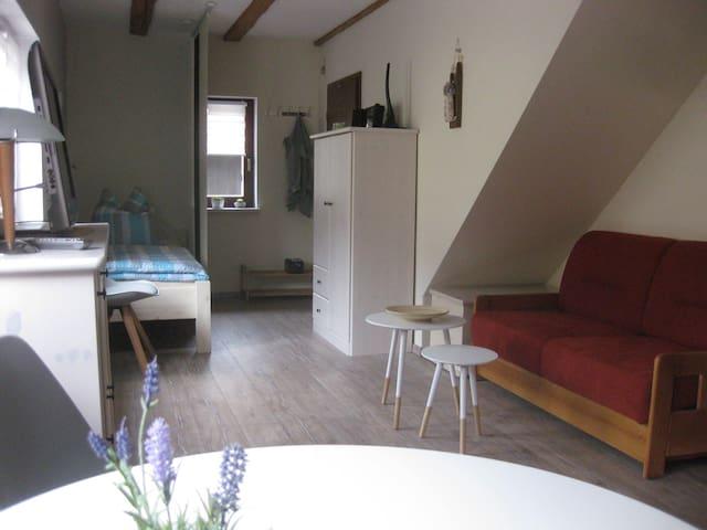 Ferienwohnung / Monteurwohnung in ruhiger Lage - Pößneck - Leilighet