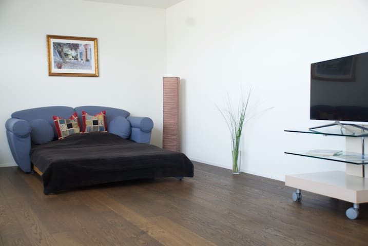 Cozy and luxurious appartment, 30 Min to Zürich - Lachen - Ortak mülk