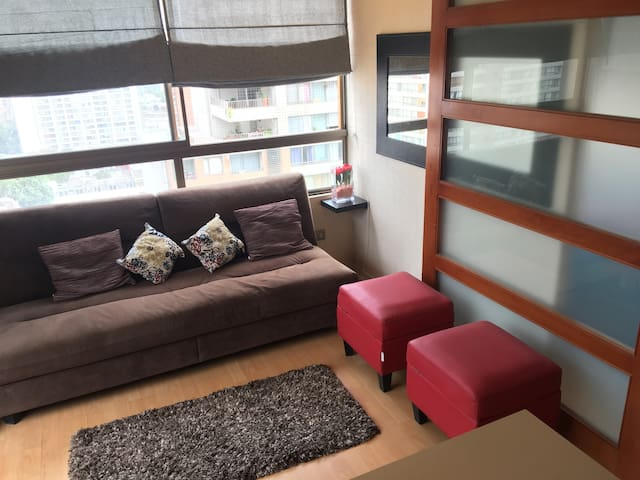 Santiago centro, cómodo y excelente vista - Santiago - Pis