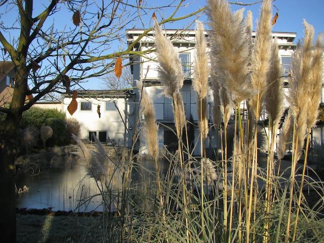 Helle, moderne, großzügige Wohnung in Polch - Polch - Leilighet