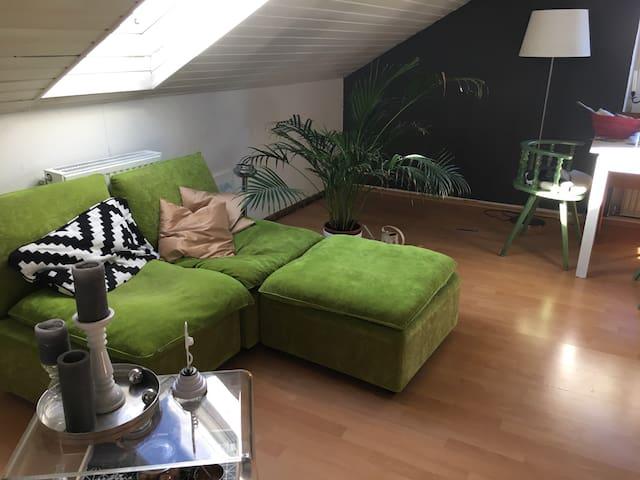 Gemütlichste Dachgeschosswohnung - Grünwald - Appartement