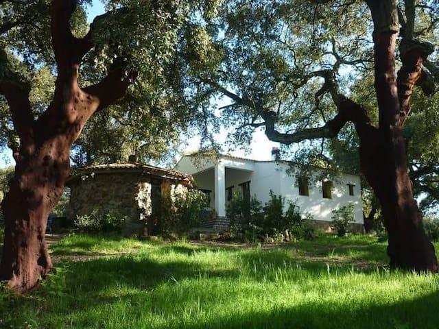 El Chaparral de Aracena, Alojamiento Rural - Aracena - Huis
