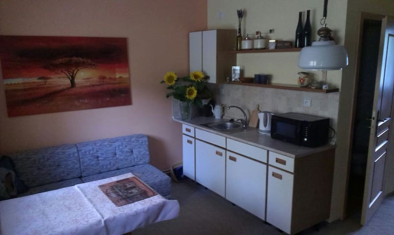 One bedroom apt in a family house - Bukovice - Hus