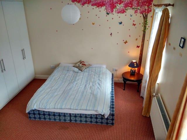 spacious double bedroom, quiet area - Swords - Appartement