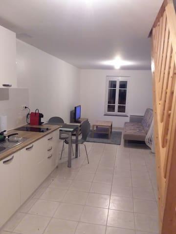 Appartement rénové centre ville de Courtenay - Courtenay - Lägenhet