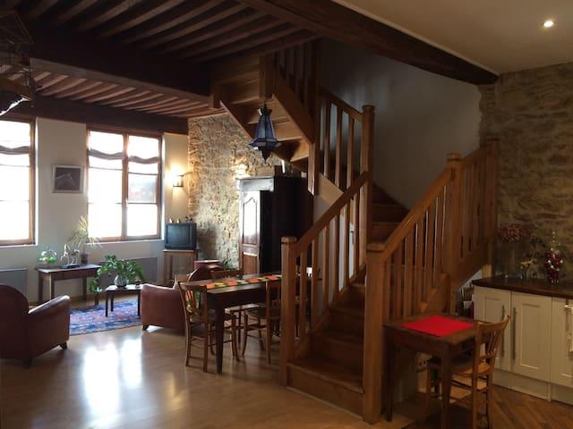 Grand appartement de caractère au coeur de Macon - Mâcon - Lägenhet