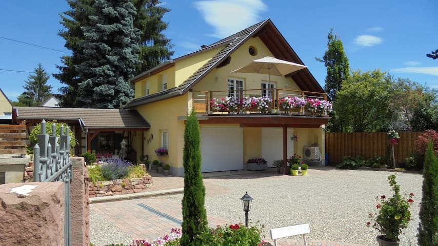 Charming gîte with garden&terrace - Benfeld - Huis