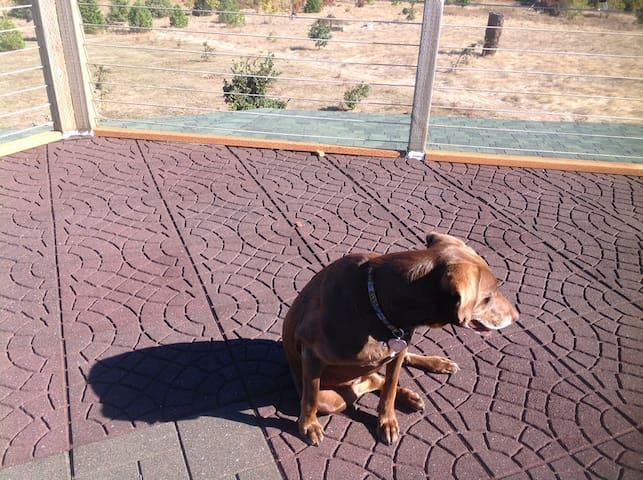 Buena Vista Observatory (Hot Tub/Wifi/View) - Independence - Casa de huéspedes