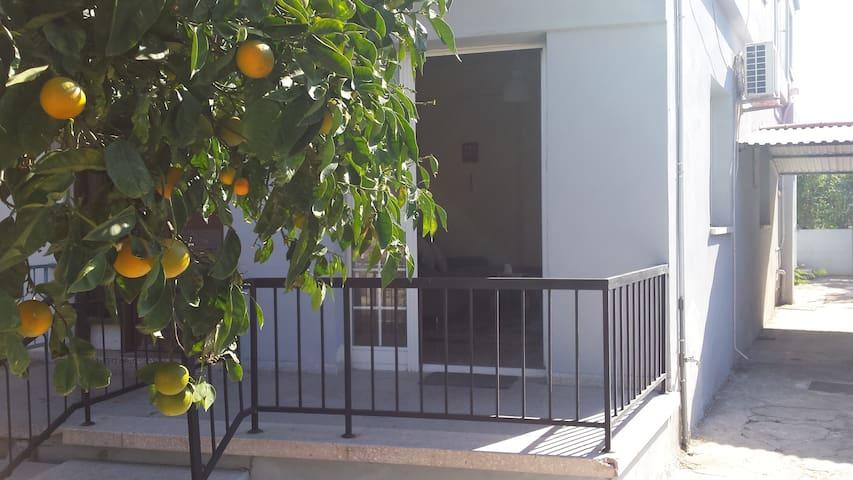 Comfortable apartment in good location - Limassol - Lägenhet