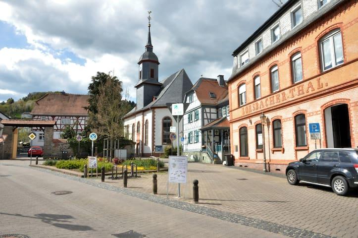 High-quality apartment in historic surrounding - Hofheim am Taunus - Departamento