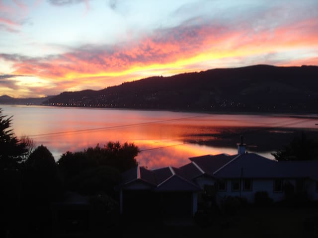 Otago Harbour Panorama - Dunedin - Bed & Breakfast