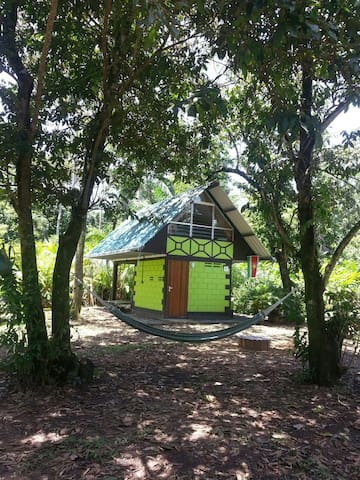 Jungle Cabana, Suriname - Meerzorg, Commewijne, Suriname