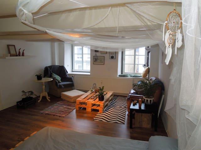 Gemütliche(s) Zimmer/ Wohnung in der Innenstadt - Flensburg - Appartement