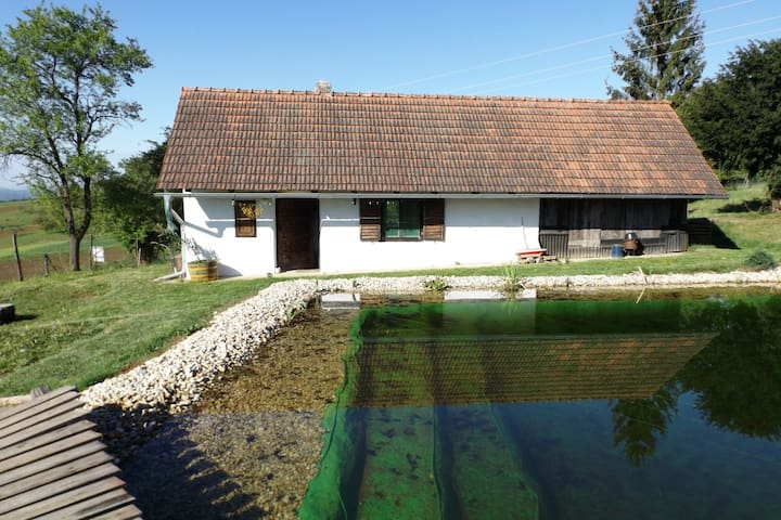 Ferienhaus Bioweinbau Oberkofler - Jennersddorf
