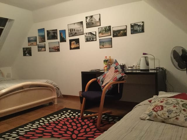 Homely bedroom for 3 - Frisange - Huis