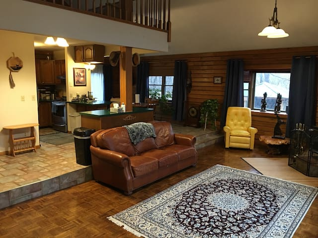 Two Story Log Cabin on Wooded Lot - Caseyville - Dom