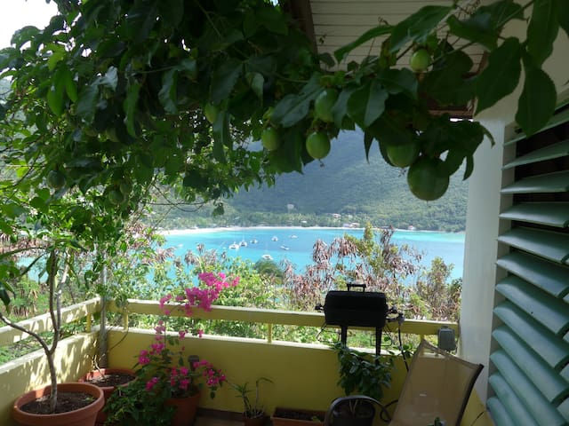 10 minutes from the best beach in the BVI - VG - 獨棟