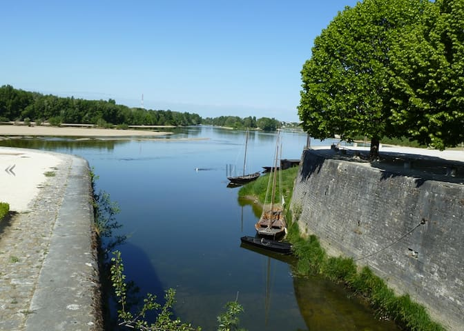 Nice flat close to the Loire river  - Combleux - Appartement