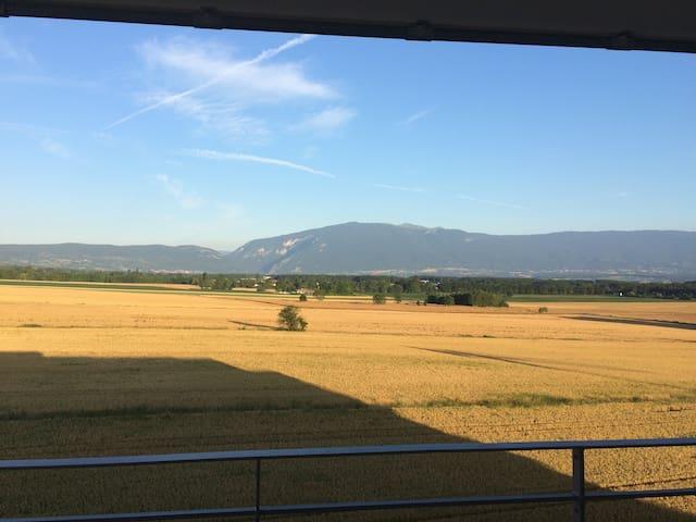 Nice falt close to Geneva and ski stations - Viry