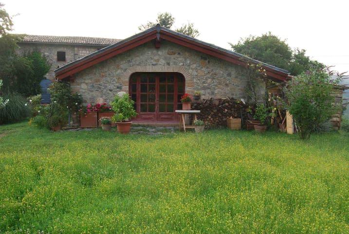 Cottage near Orvieto - Castel Giorgio - Vakantiewoning