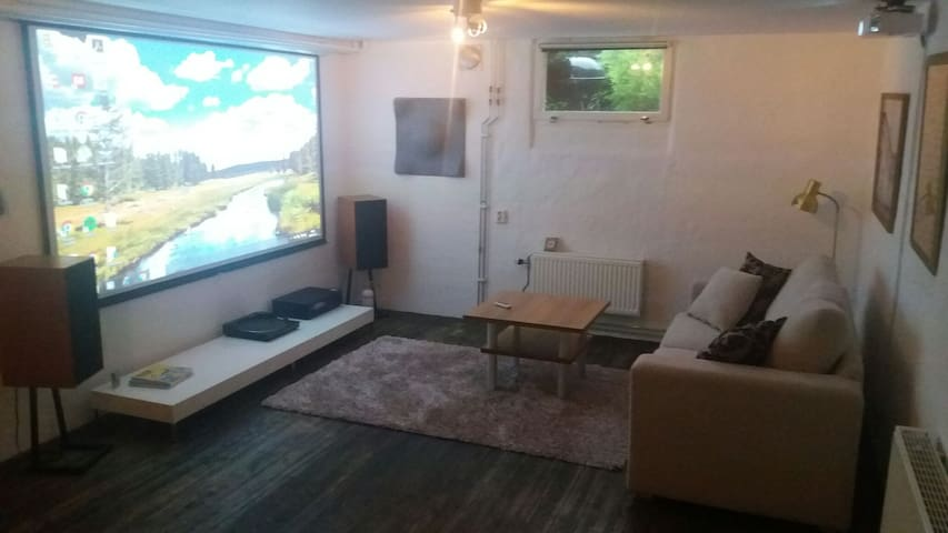 60 m2 basement in Alingsås - Alingsås - Villa