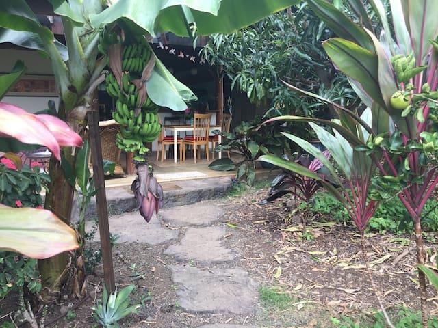 Beautiful~Bohemian~Tropical Kealakekua Bay Retreat - Captain Cook