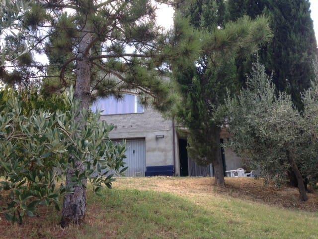 Apartment in the Tuscan countryside - Chiassa Superiore - Leilighet