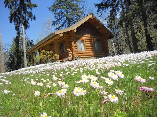 "The Cottontail Haven Lodge- your ""get-away"" place - Lake Tapps - Kabin"