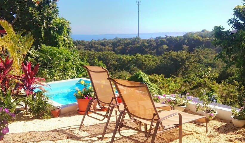 Ocean View, Private Pool & Walk to Sandy Beach - リンコン - 一軒家