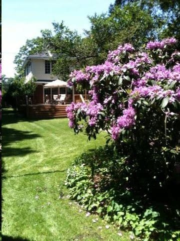 Share my 5BDS HOUSE 34 MINS TO PENN AND 3 COLLEGES - West Hempstead - Ev