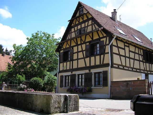 Gîte à La Petite Fontaine - Langensoultzbach - Casa