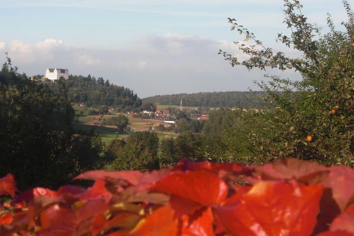 """Idyllische Whng mitten in der Natur """"Haus Magnolia - Fischbachtal - 아파트"""