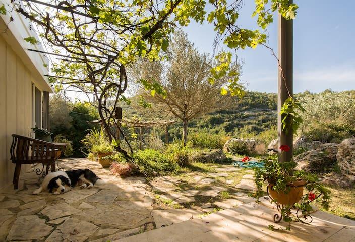 Charming villa infront of nature - Ein Hod - Villa