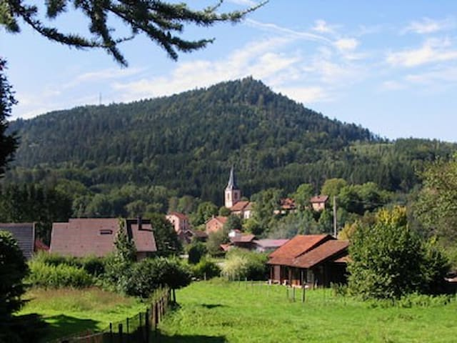 Old farm renovated in Vosges forest - Le Saulcy - Huis