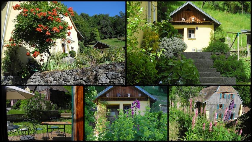 Au coeur du Vallon le temps y est parfois suspendu - Murbach - 自然小屋