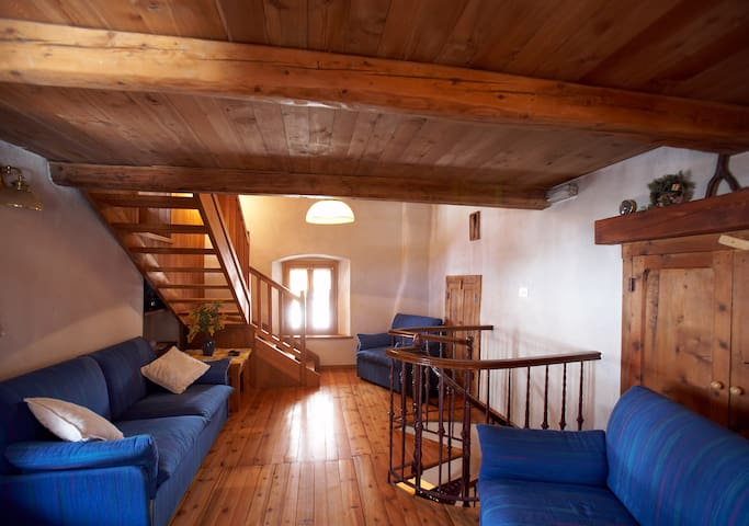 Maison Carré - Carrè - Houten huisje