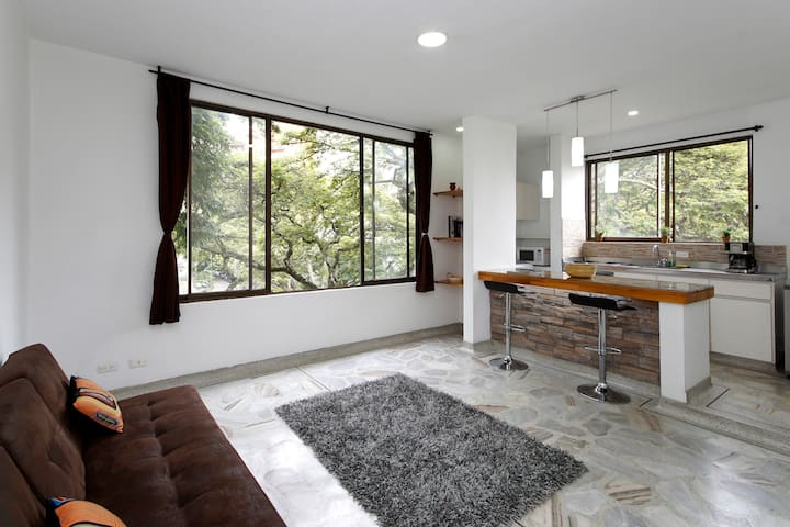 Perfectly Located Spacious 1BDR Apt - 卡利 - 公寓