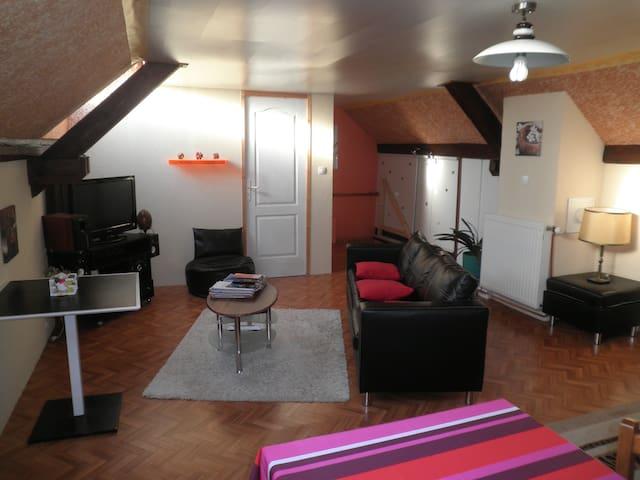 très beau logement neuf au calme. - Maennolsheim - Hus