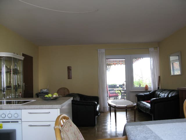 Ruhige moderne Wohnung in  bester Lage - Offenburg - Appartement