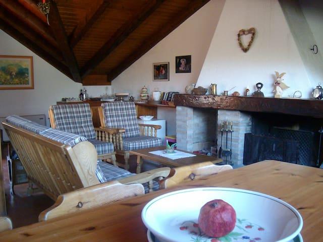 Graziosa casa nel cuore delle alpi - Paluzza - Maison
